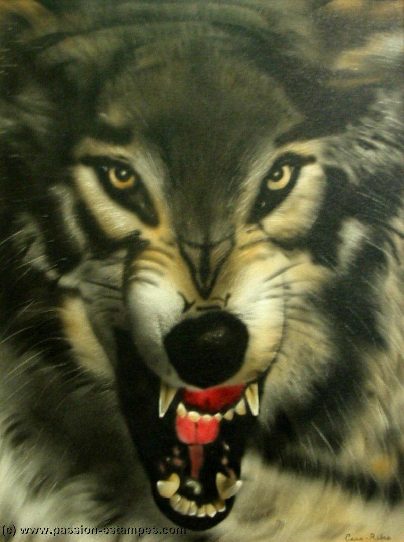 Loups et légendes dans LOUP LoupPeur